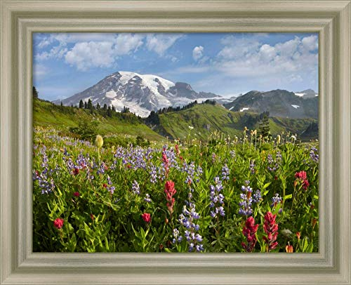 Framed Canvas Wall Art Print | Home Wall Decor Canvas Art | Paradise Meadow and Mount Rainier, Mount Rainier National Park, Washington by Tim Fitzharris | Modern Decor | Stretched Canvas Prints
