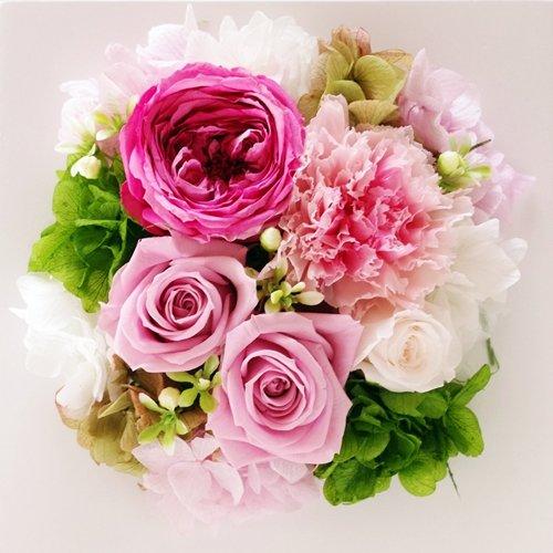 Eclaire Flower Design プリザーブドフラワー フレーム(シャーベットローズ) B00VMEXYRE