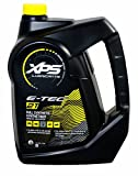 Sea-Doo XP-S 2 Stroke Synthetic Oil - 1 Gallon 293600133