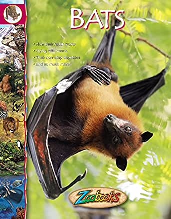 Zoobooks Bats - Kindle edition by Wildlife Education Ltd