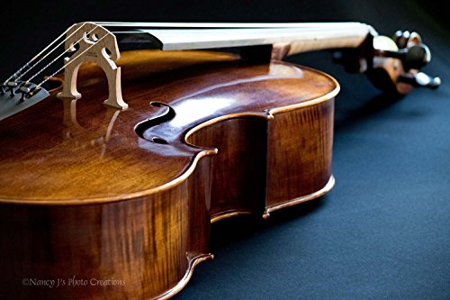 (Cello Fine Art Photographic Print Unframed Stringed Instrument Photography Classical Music Gift for Musician Brown Blue Contemporary Art for Home or Office 5x7 8x10 8x12 11x14 12x18 16x20 16x24)
