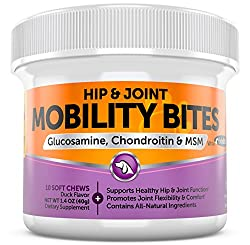 Glucosamine Hcl + Chondroitin Sulfate & Msm - Hip & Joint Treats For Dogs With Arthritis Pain - Chewable Mobility Bites With All Natural Immune & Cardiovascular Support For Pets - 10 Soft Chews