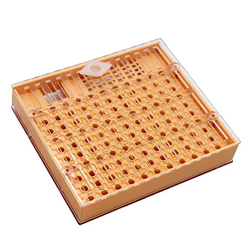 (livestocktool.com Beekeeping Queen Rearing Box Cell Kit Cupularve Queen Bee Cage Cell Royal Jelly Cups Bee Keeping Equipment Tools (rearing box))