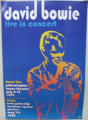 DAVID BOWIE - LIVE IN CONCERT 15x22 POSTER P2205