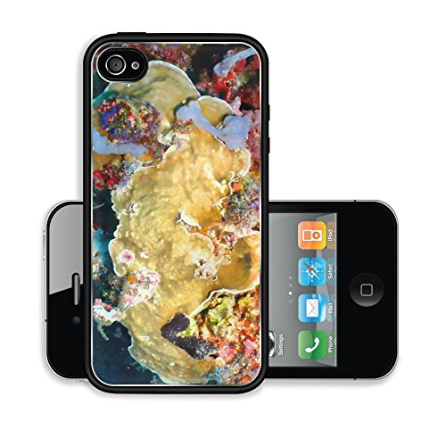iPhone 4 4S Case 040 Soft Coral Garden Image 8535401557
