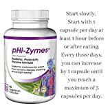 pHi-Zymes (Systemic Proteolytic Enzymes) 90 count