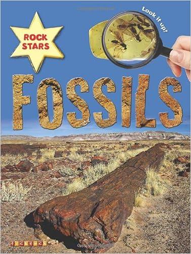Rock Stars Fossils