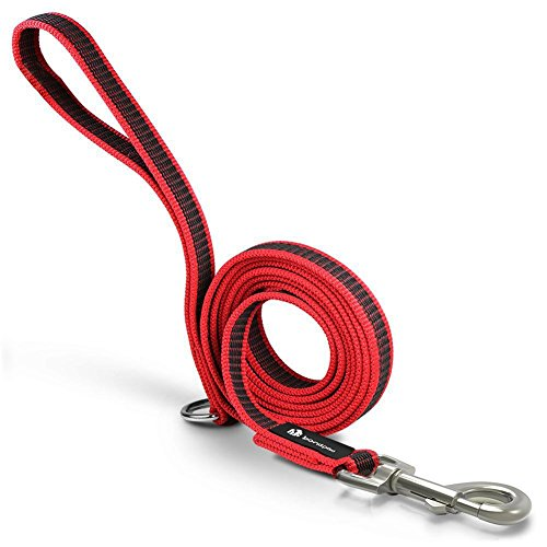 Heavy Duty Dog Leash, Red Nylon Rope Dog Leads 6.6 feet Non Slip Leash with Handle for Pet Supplies by Bondpaw