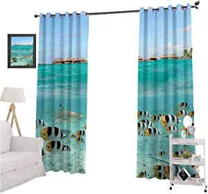 Ocean Curtains and rods Set Blacktip Reef Shark Chasing Butterfly Fish Lagoon of Bora Bora Tahiti Breathable Material W84 x L84  Aqua Yellow and Black