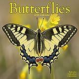 Butterflies Calendar - 2016 Wall calendars - Animal Calendar - Monthly Wall Calendar by Avonside