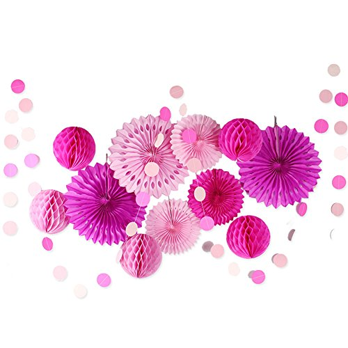 12Pcs Pink and Rosolic Tissue Paper Honeycomb Balls