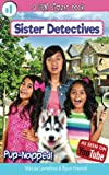 Pup-Napped!: (a Gem Sisters Book): Volume 1