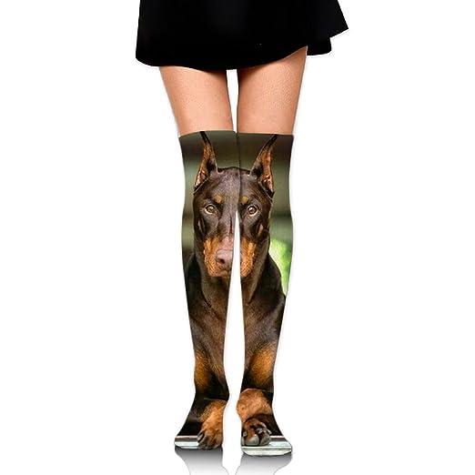 3c1f3da07183c Long Tube Dress Socks Thigh High Over Knee Doberman Pinscher Legging Slim  Look For Women Girls