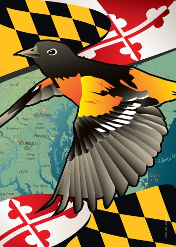 Citizen Pride Maryland Oriole Large House Flag by Joe Barsin, 28x40