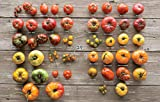 Epic Tomatoes: How to Select and Grow the Best