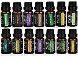 Premium 14 Pure Essential Oils Variety Pack