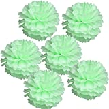 "Arts & Crafts : Landisun Wedding Birthday Party Room Decoration Tissue Paper Flower Poms(10"" Inches (pack of 6), Mint Green)"