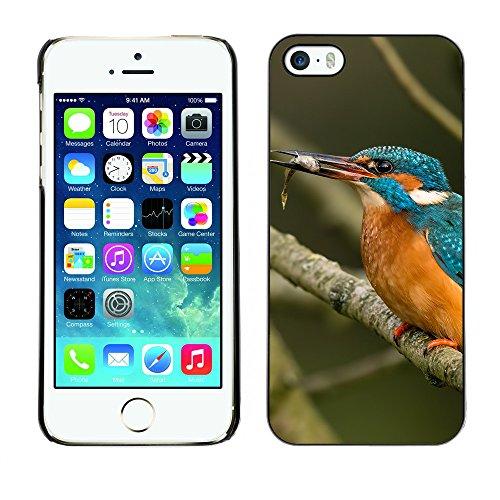 Premio Sottile Slim Cassa Custodia Case Cover Shell // F00013134 oiseau // Apple iPhone 5 5S 5G