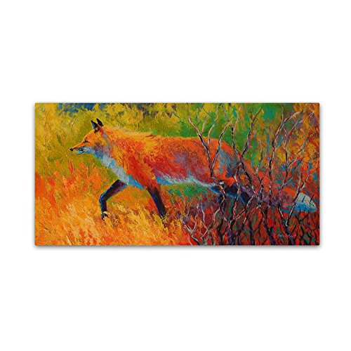 Red Fox 1 by Marion Rose, 12x24-Inch Canvas Wall Art