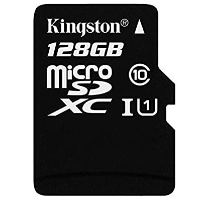 Professional Kingston 128GB ViewSonic ViewPad 10Pro 32GB MicroSDXC Card with Custom formatting and Standard SD Adapter! (Class 10, UHS-I)