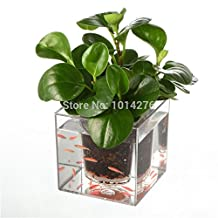 Creative Clear Tube Plant Pot Flower Pot Decorative Self-Watering Planter Fish Tank for Home Office Desk