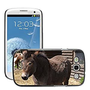 Hot Style Cell Phone PC Hard Case Cover // M00108181 Pony Horse Animal Fur Sweet Grey // Samsung Galaxy S3 S III SIII i9300