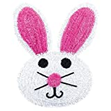 Amscan Egg-stra Special Easter Bunny Wreath Wall Decoration (1 Piece), Multicolor, 18'' x 13''