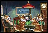 Caroline's Treasures 7416JMAT Corgi Playing Poker Indoor or Outdoor Mat, 24'' H x 36'' W, Multicolor
