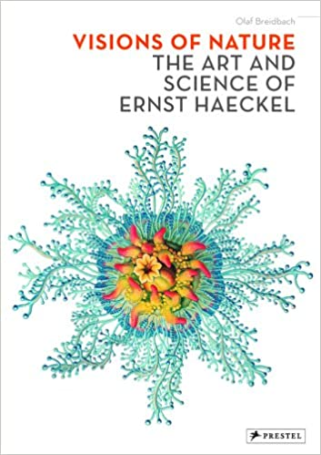 Amazon visions of nature the art and science of ernst haeckel amazon visions of nature the art and science of ernst haeckel 9783791336640 olaf breidbach books fandeluxe Gallery