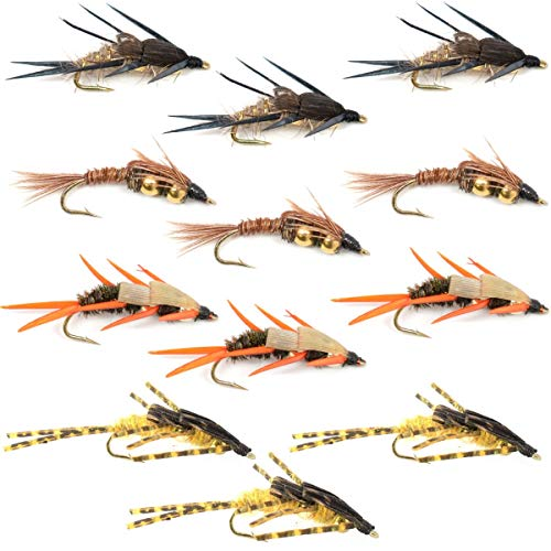 Trout Fly Assortment - Double Bead Nymph Collection 1 Dozen Weighted Nymph Fly Fishing Flies - Hook Sizes 8, 10, ()