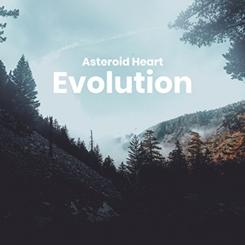 Asteroid Heart - Evolution (2018)