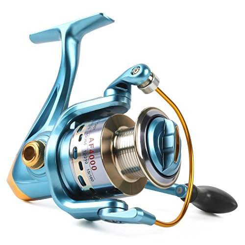 Sougayilang Fishing Reel Spinning 11+1bb Left/Right Interchangeable Spinner Gear High Speed Smooth Bass Fishing Reels (AF2000)