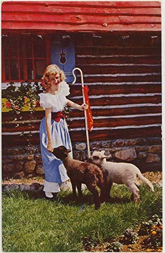 Little Bo Peep at Santa's Workshop North Pole - Wilmington New York - Vintage Chrome Amusement Park Postcard - #SC1963