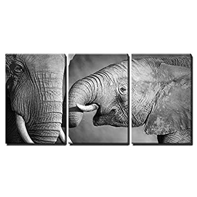 Elephants Showing Affection Artistic Processing x3 Panels - Canvas Art