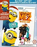 Despicable Me 2 (Includes Limited Edition Ornament Gift Set)