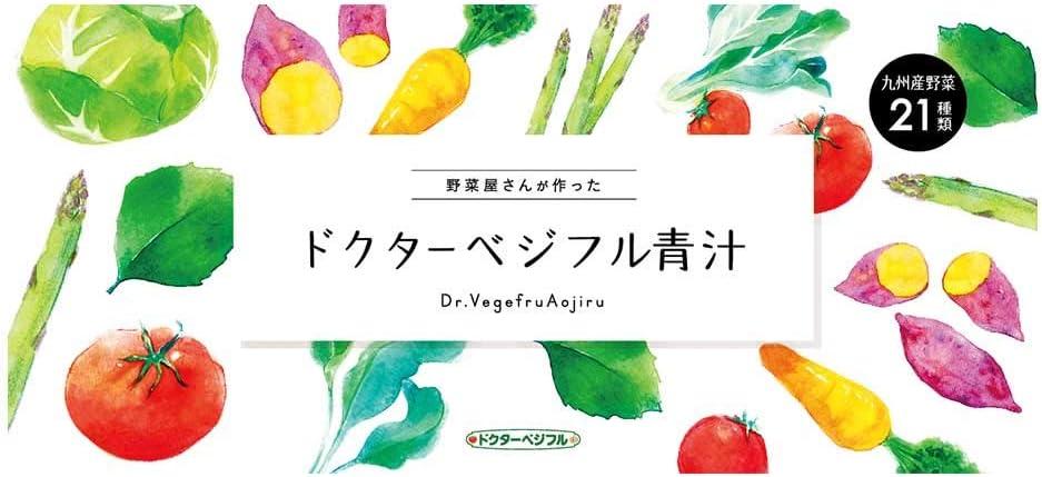 ドクターベジフル青汁 100%九州産 無添加 約1カ月分(30包) 21種類の契約農家の野菜を使用
