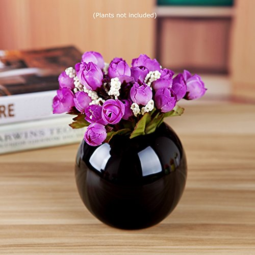 Guo's Cute Plants Vase Decorative Bud Vase Succulent Pots Storage Jars Various 7 Colors (One Black)