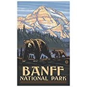 Northwest Art Mall Banff National Park Grizzly Bears Travel Art Print Poster by Paul A. Lanquist (12  x 18 )