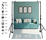 Leyiyi 4x6ft Photography Background Cosy Sofa Backdrop Wedding Happy Birthday Party Modern Living Room Interior Design Blue White Striped Wall Baby Shower Photo Portrait Vinyl Studio Video Prop