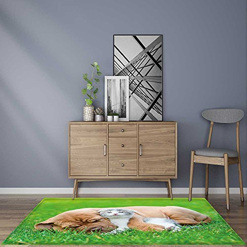 Stain Resistant Sleeping Bordeaux puppy dog hugs newborn kitten on green grass Rug for KitchensW35.5 x L47 ()