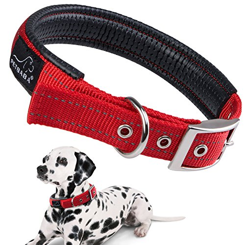 PETBABAB Padded Dog Collar with Metal Buckle, Soft to Protect Neck, Reflective at Safe Night Walk, Durable to Last Long in Walking Training Pet in Red