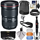 Canon EF 16-35mm f/2.8L III USM Zoom Lens with 3 UV/CPL/ND8 Filters + Flash Diffusers + Sling Strap + Kit