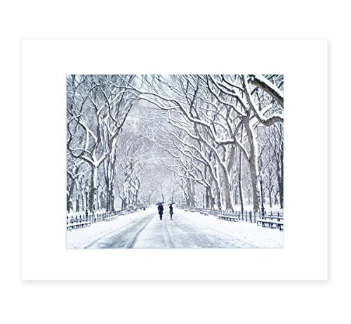 New York City Wall Art, Central Park in Snow, NYC Decor, 8x10 Matted Photography Print, 'The Mall In - York New In Malls Manhattan
