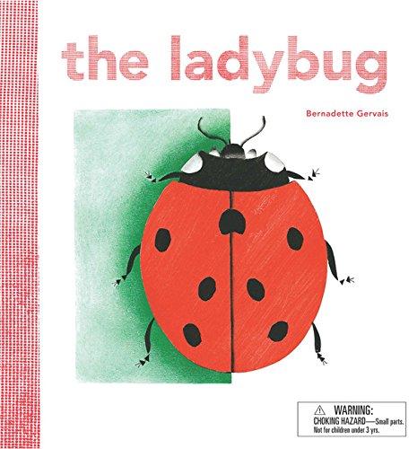 Gem Ladybug - 4
