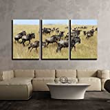 wall26 3 Piece Canvas Wall Art - Wildebeest in National Park of Kenya, Africa - Modern Home Decor Stretched and Framed Ready to Hang - 16''x24''x3 Panels