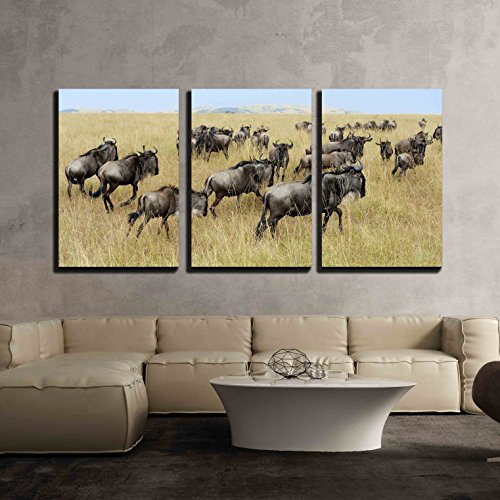 Wildebeest in National Park of Kenya Africa x3 Panels