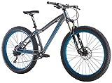 "Diamondback Bicycles Mason Trail 27.5 Plus All Mountain Bike, Silver, 17""/Medium"