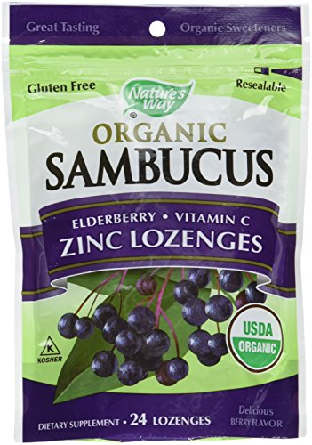 Zinc Syrup (Nature's Way Organic Lozenge, Elderberry Zinc, 24 lozenges, 2 Count.)