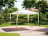 alp Folding Outdoor Patio Backyard Canopy Gazebo Garden Fabric 10' x 10' White