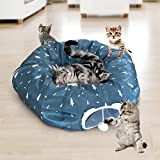 Cat Tube and Tunnel with Central Mat for Cat